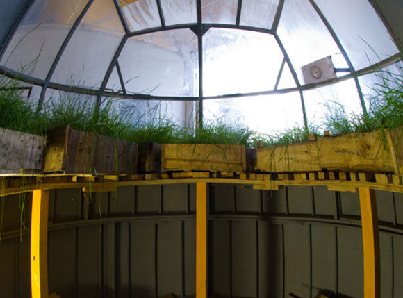 Alan Bond Market Garden Interior